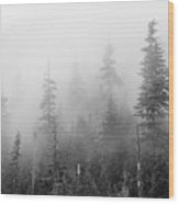 Stevens Pass Trees And Fog 3201 Wood Print