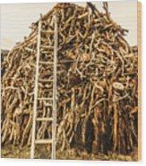 Sticks And Ladders Wood Print