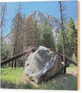 Sticks And Rock Wood Print