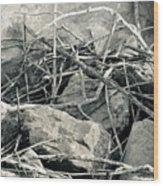 Sticks And Stones 2782 Wood Print