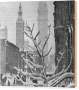 Stieglitz: New York, C1914 Wood Print