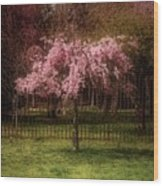 Still - Ocean County Park Wood Print