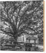 Still Faithful B W God Bethany Presbyterian Church The Old Oak Tree Greene County Georgia Art Wood Print