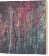 Still Falling  Wood Print