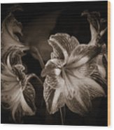 Still. Life. Colorless. Flowers. Wood Print