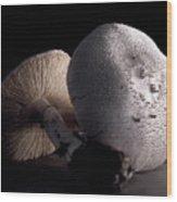 Still Life Two Mushrooms Wood Print