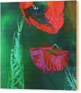 Still Life With Poppies. Wood Print