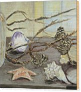 Still Life With Seashells And Pine Cones Wood Print