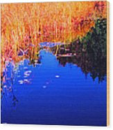 Still Water Beside The Forest 3 Ae32  Wood Print