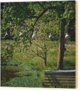 Stillness Of Spring Wood Print
