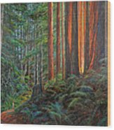 Stillwater Cove Canyon Trail Wood Print