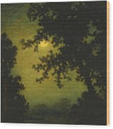 Stilly Night Wood Print