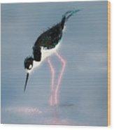 Stilt Pink Legs Wood Print