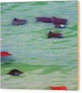Sting Rays Wood Print