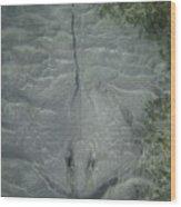 Stingray Camo Wood Print