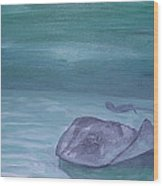Stingrays At Cayman Island Wood Print