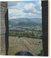 Stirling Canon Wood Print