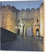 Stirling Castle Scotland In A Misty Night Wood Print