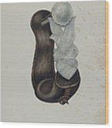 Stirrup Wood Print