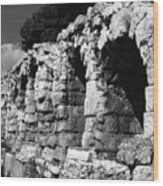 Stoa of Eumenes Athens Wood Print