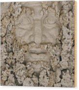 Stone 10 Wood Print