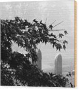 Stone Cold Fog Wood Print