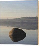 Stone Egg Wood Print