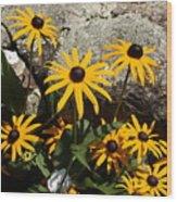 Stone Flowers Black Eyed Susan Wood Print