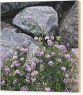 Stone Flowers Pink Wood Print