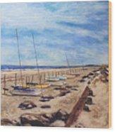 Stone Harbor Wood Print by Joyce A Guariglia