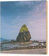Stone Island Wood Print