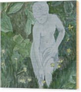 Stone Lady In The Butercups Wood Print