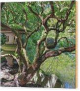 Stone Lantern By Upper Pond Wood Print