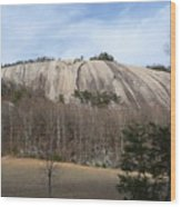 Stone Mountain Early Spring Wood Print