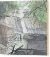 Stone Mountain Falls - The Upper Cascade Wood Print
