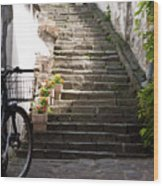 Stone Stairs Wood Print
