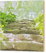 Stone Stairs Wood Print by Stefano Piccini