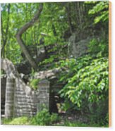 Stone Stairway Along The Wissahickon Creek Wood Print