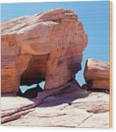 Stone Temple Valley Of Fire Wood Print