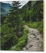 Stone Walkway Into The Valley Wood Print
