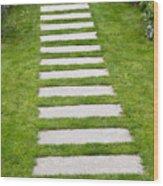 Stone Walkway Wood Print