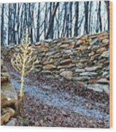Stone Wall Ga Mountain 1 Wood Print