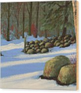 Stone Wall Gateway Wood Print