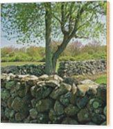 Stone Wall In Rhode Island Wood Print