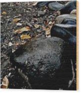 Stoned Trail Wood Print