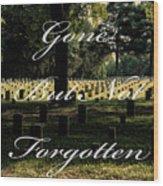 Stones River Battlefield  Wood Print