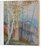 Stoney Brooke Park Wood Print