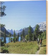 Stoney Indian Pass Trail Around Cosley Lake - Glacier National Park Wood Print
