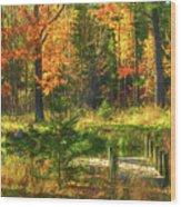 Stoney Ridge Road Dock Wood Print