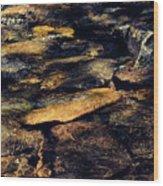Stoney Water Wood Print